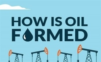 A Guide to Oil and How it is Formed