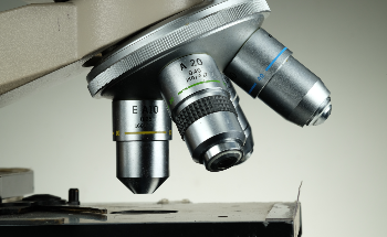 Using Optical Microscopy for Petrographic Analysis