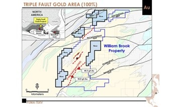 Puma Exploration Acquires Additional Land Package at Triple Fault Gold Project